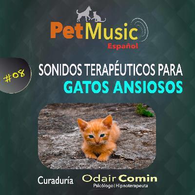 #08 Sonidos Terapéuticos para Gatos Ansiosos