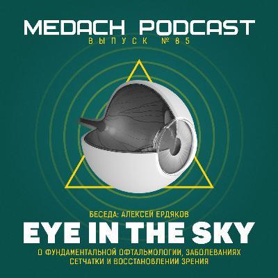 Алексей Ердяков | Eye in the Sky