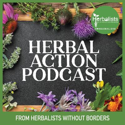 Herbal Action Podcast: Nicole Rose, Solidarity Apothecary