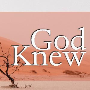 God Knew - Wonders