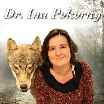 Wölfe im Papierkarton - Dr. Ina Pokorny