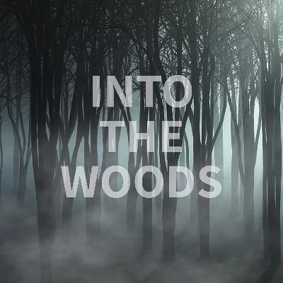 Into the Woods by Harriet, DCIS Year 6