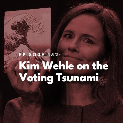 Kim Wehle on the Voting Tsunami