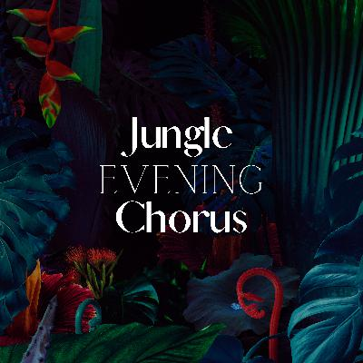 Jungle Evening Chorus: Nature Sounds for Sleep