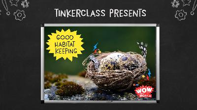 Tinkerclass (Week 3 Day 3): Create & Test