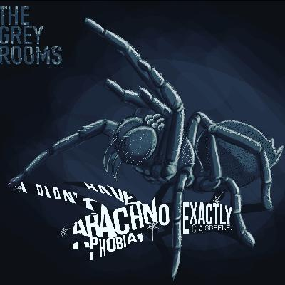 S1PRE2 - Room #1125 - I Didn't Have Arachnophobia... Exactly