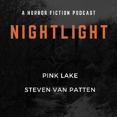 306: Pink Lake by Steven Van Patten