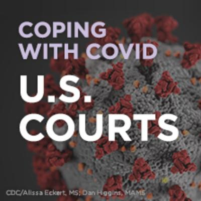 Coping with COVID: How Courts Are Preserving Access to Justice