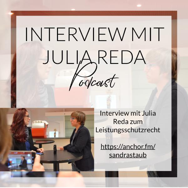 013 - Interview mit Julia Reda zum Leistungsschutzrecht