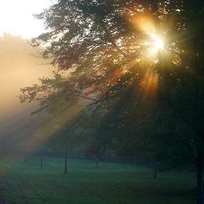 "Come Follow Me D&C Podcast 2, ""I Saw a Pillar of Light"" -- Joseph Smith History 1: 1-26"