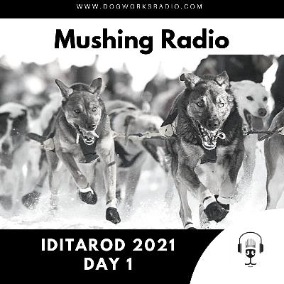 Iditarod 2021 Daily Coverage | Day 1
