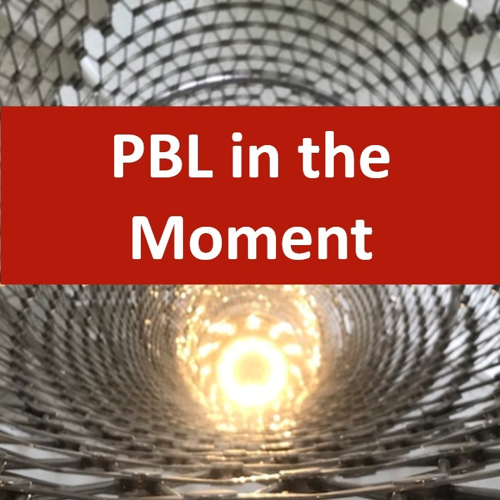 PBL in the Moment