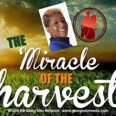 Miracle Harvest  Part 4 - Davida Smith