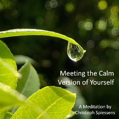 Meeting the Calm Version of Yourself