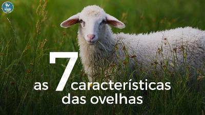 AS 7 CARACTERÍSTICAS DAS OVEHAS | Pr Luis Pedro