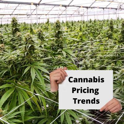 Cannabis Pricing Trends Report