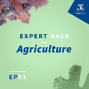 How smart agriculture can improve your decision making
