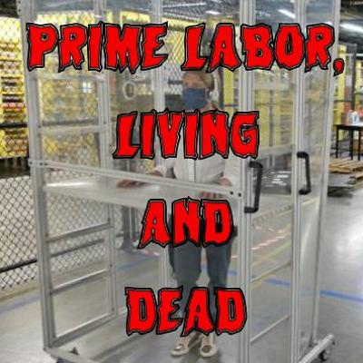 63. Prime Labor, Living and Dead (patreon teaser)