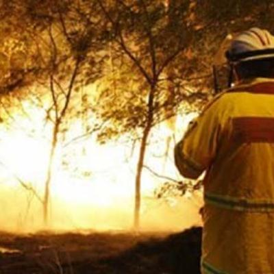 Severe Fire Danger, Police Officer Assaulted, & Local Cricket Cancelled