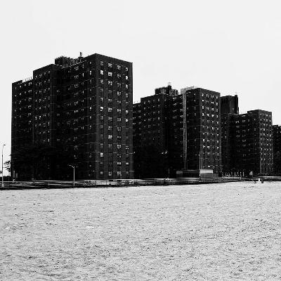 "NM READS 01: Reinaldo Laddaga's ""A Coney Island of the Virus"""