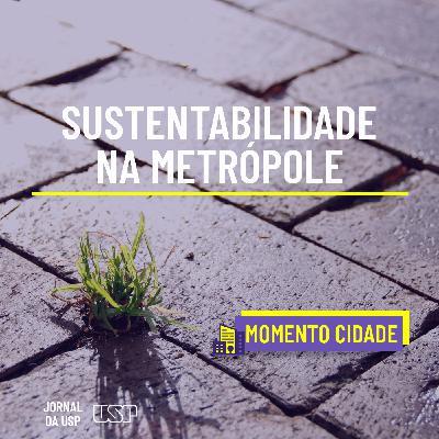 Momento Cidade #46: Como integrar decisões pode ampliar a sustentabilidade urbana?