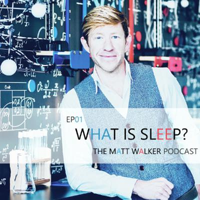 #01 What is Sleep?