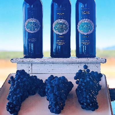 Callaghan Vineyards- Elgin, AZ Ep. 2 Pt. 2