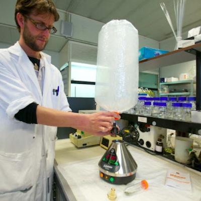Vaporizzazione: studi scientifici, vantaggi e temperature