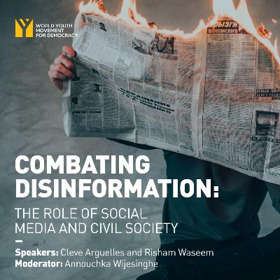 Combating Disinformation: The Role of Social Media and Civil Society