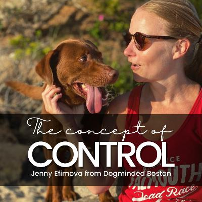 The Concept of Control: Jenny Efimova from https://www.dogmindedboston.com