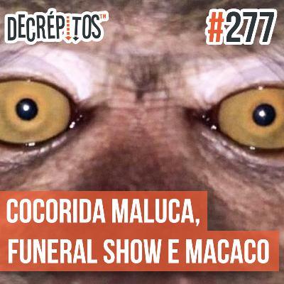 Decrépitos 277 - VACILO NEWS: Cocorrida Maluca, Funeral Show e Macaco