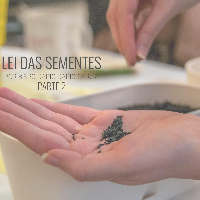 LEI DAS SEMENTES COM BISPO DARIO GARCIA PARTE 2