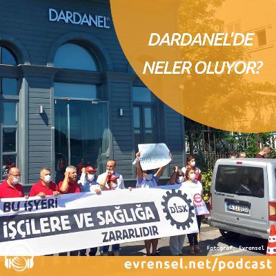 Dardanel'de neler oluyor?