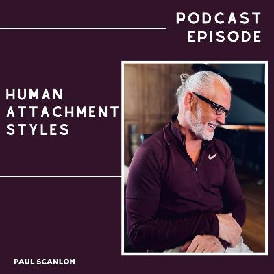 Human Attachment Styles