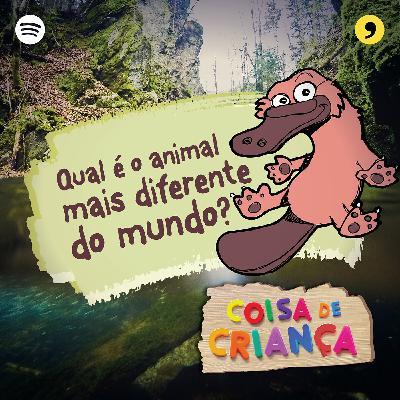 Qual é o Animal Mais Diferente do Mundo? - Temporada 2 - Episódio 6