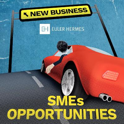 S1 E11 - SMEs OPPORTUNITIES