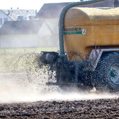 Estudo aponta que a agropecuária pode ser importante fornecedor de energia limpa