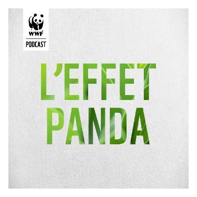 L'Effet Panda : un podcast WWF