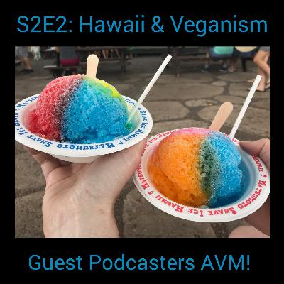 S2E2: Hawaii, Travel Challenges, and Shave Ice with Guest Podcasters Animal, Vegetable, Marital