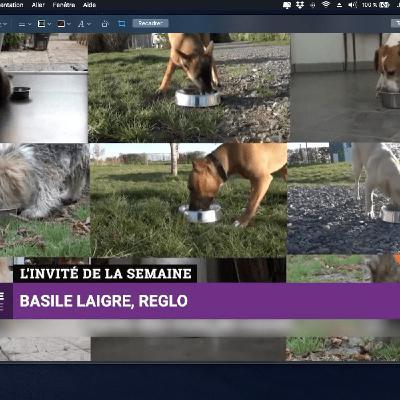 Basile Laigre - Croquettes pour chien REGLO - Business Club S2021 E63