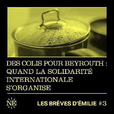 Les Brèves d'Émilie - Des colis pour Beyrouth : quand la solidarité internationale s'organise (#3)