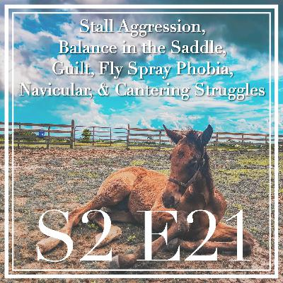 21 || Stall Aggression, Balance in the Saddle, Guilt, Fly Spray Phobia, Navicular, & Cantering Struggles