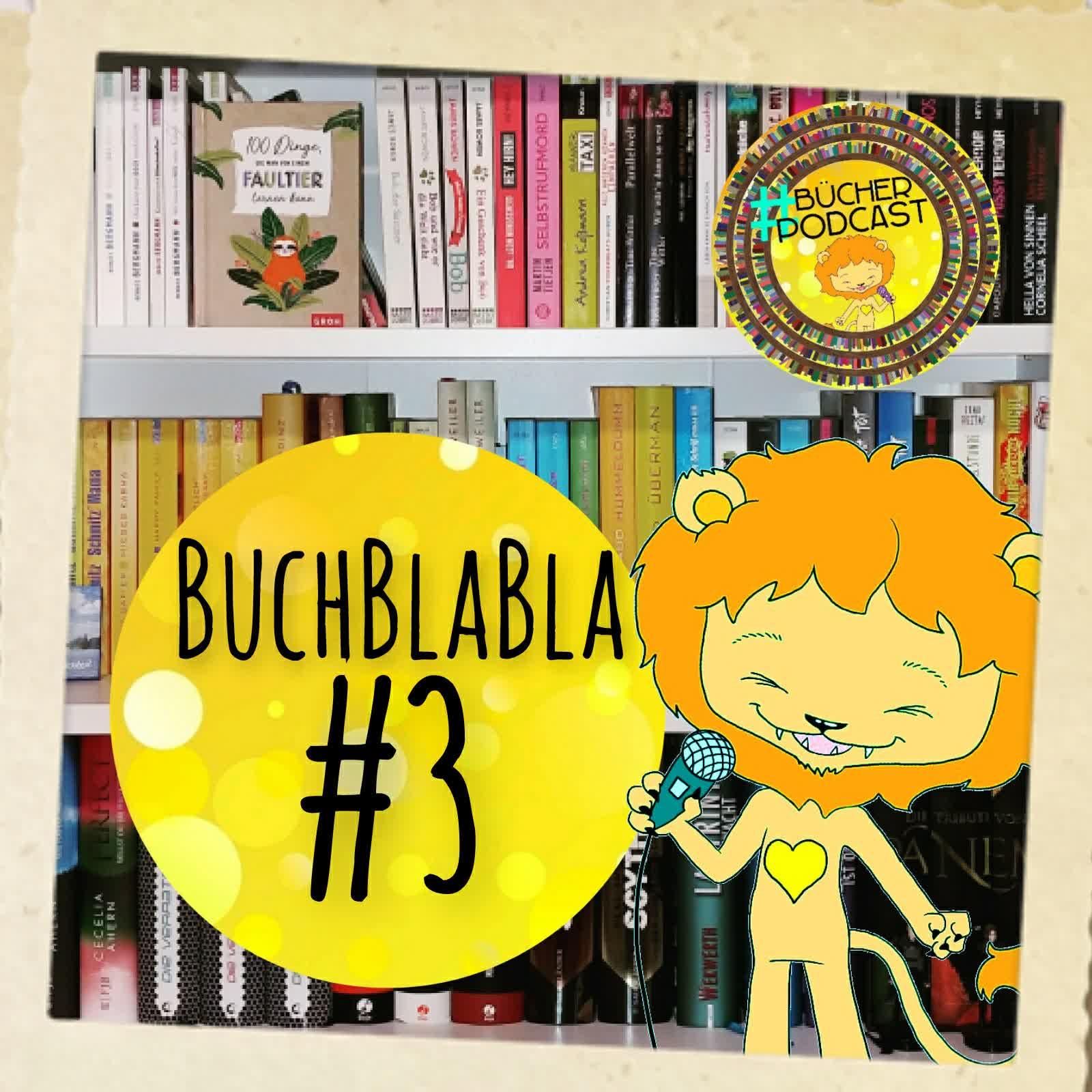 BuchBlaBla #3