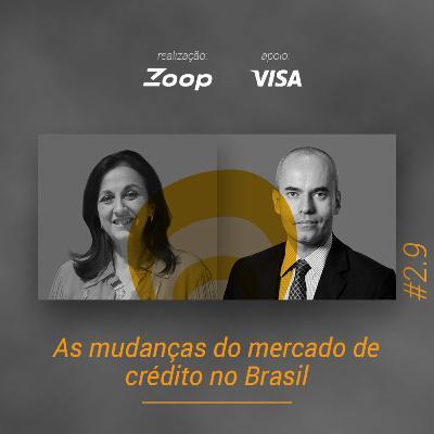 #2.9 As mudanças do mercado de crédito no Brasil
