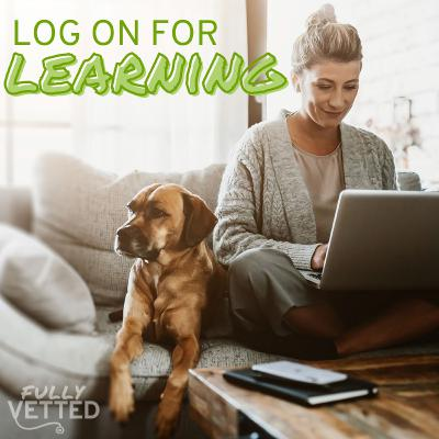 22. Log on for Learning: MVC 2021 Veers into Virtual
