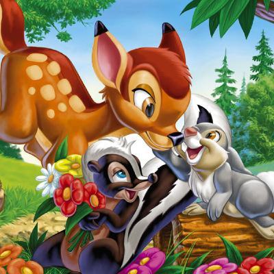 Bambi Story