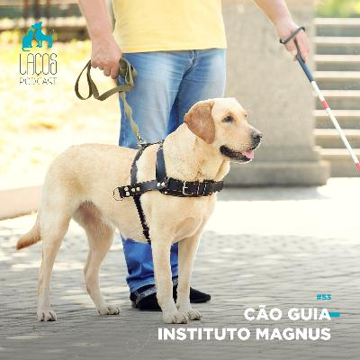 #53: Cão Guia - Instituto Magnus