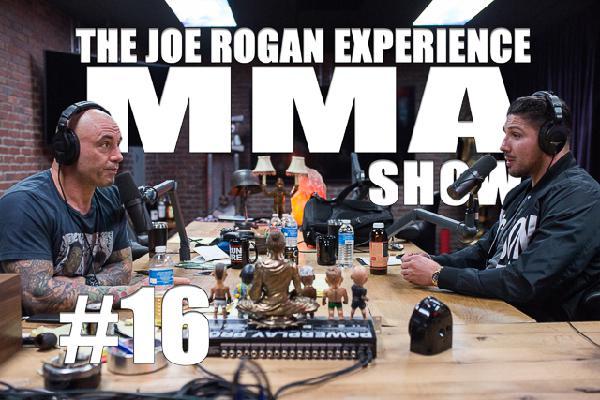 JRE MMA Show #16 with Brendan Schaub