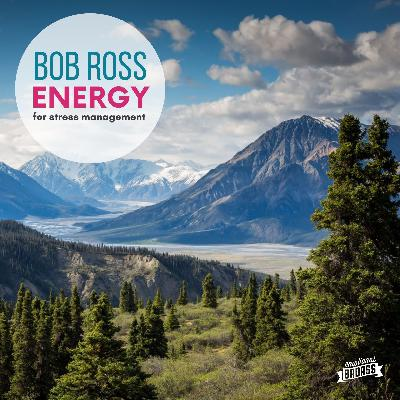 Bob Ross Energy for Fatigue & Stress Management