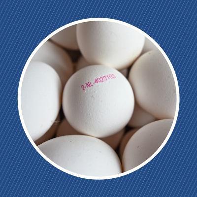 Que signifie le code imprimé sur les œufs ?